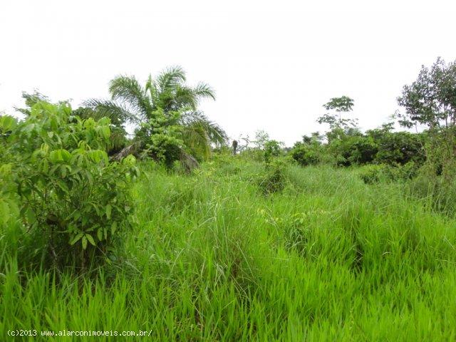Venda SITIO Alta Floresta D´Oeste - RO